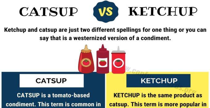 CATSUP vs KETCHUP: Useful Difference between Ketchup vs Catsup